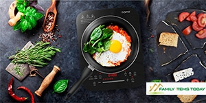 Best Portable Induction Cooktop Consumer Reports (2020)